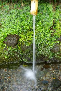 浅間神社の湧水